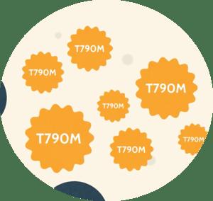 T790M Mutation